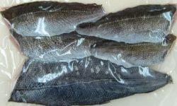 特殊凍結 鮮魚フィーレ