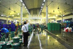 タレ-タイ市場視察1